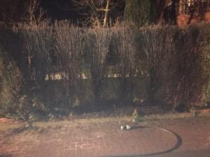 Heckenbrand Hinter den Gärten, Hartum